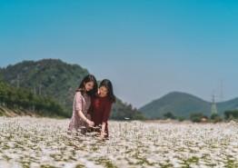 운산 용장천 꽃밭