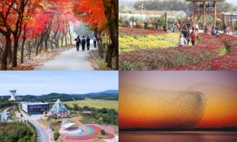 서산시, 가을 여행주간 맞아 다채로운 축제 '눈길'