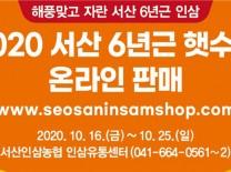 서산 6년근 가을 햇수삼 온·오프라인 할인 판매!!